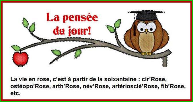 Fabuleux Humour 3 - Rions un peu !! - chezjoelines jimdo page! OH03