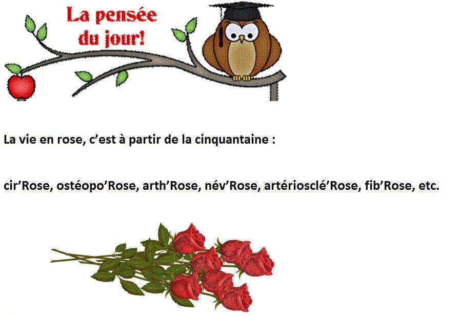Humour 3 - Rions un peu !! - chezjoelines jimdo page!